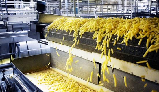 مشروع مصنع شرائح البطاطس المقلية